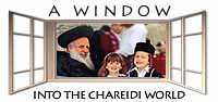 A Window into the Chareidi World